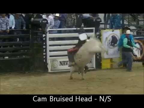 Download Bull Riding - INFR - complete short round