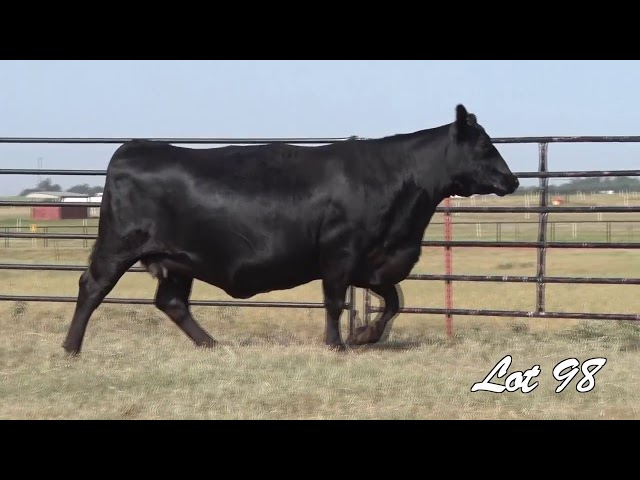 Pollard Farms Lot 98