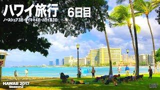 ハワイ旅行10泊12日 ノースショア・ワイキキ・ハワイ島ハプナビーチのたび 6日目 thumbnail