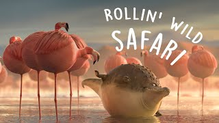 ROLLIN` SAFARI - what if animals were round?(Some common wildlife scenes in the world of