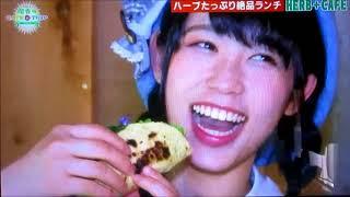 AKB48 TEAM8 チーム8 和歌山県代表 テレビ和歌山 毎週土曜日ひる12時...