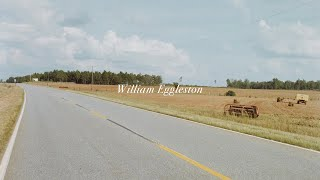 The Photography of William Eggleston