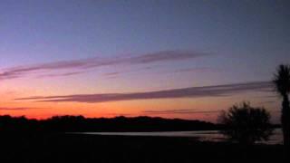 Myakka River State Park 01.29.12 by David Barkasy