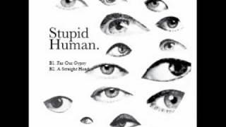 Stupid Human - A Straight Head