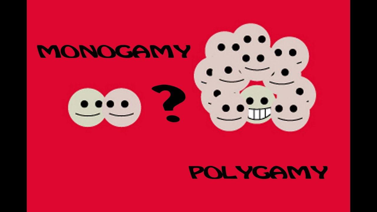 Difference Between Monogamy and Polygamy
