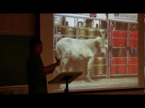 """""""Dont Be a Part of the Show"""" - a student presentation on animal circuses (UWO & FOCA)"""