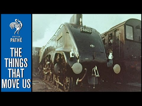 Who Said the Age of Steam Was Dead? (1969) | British Pathé