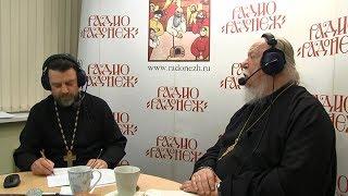 Радио «Радонеж». Протоиерей Димитрий Смирнов. Видеозапись прямого эфира от 2017.06.03