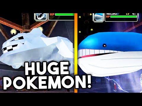 SACRED FIRE WARTORTLE! | Pokémon Colosseum Randomizer | #13
