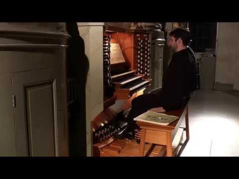 J. S. Bach - Trio Sonata in E Minor BWV 528
