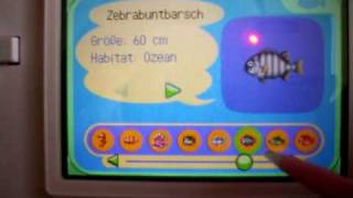 Animal Crossing: Wild World - Komplette Fischliste
