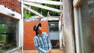 The mysterious reptile in Saigon zoo (Loài bò sát bí ẩn trong sở thú Sài Gòn)
