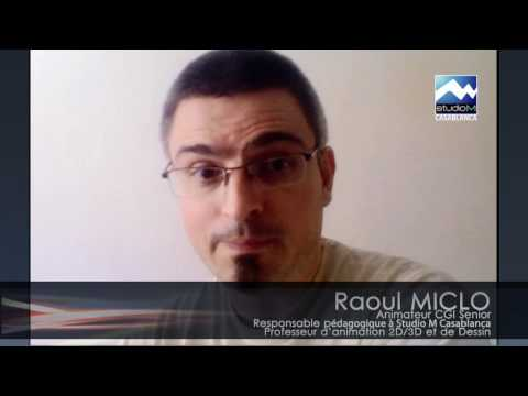 Raoul Miclo - Animator CGI Senior / Responsable pédagogique à StudioM
