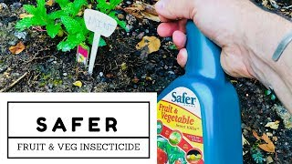 Safer Fruit And Vegetable Insect Killer Review