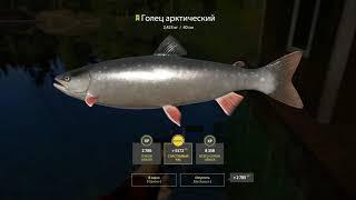Арктический Голец с причала озеро Куори Русская рыбалка 4