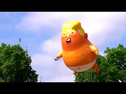 Trump baby blimp lands at London museum