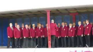 A male voice choir at the Dursley Summer Festival 2013