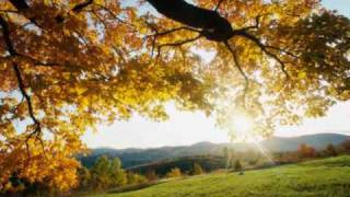 Don Henley: Sit Down You