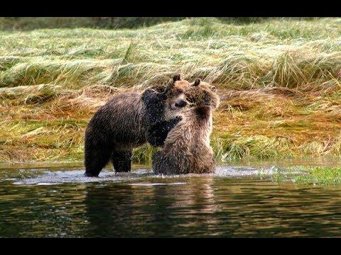 """CANADA """"Alberta e British Columbia"""" by Reportage di Viaggio (ADRIANO SOCCHI)"""