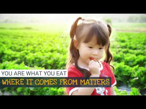 Milk and Eggs - You are what you eat - Online Farmer's Market