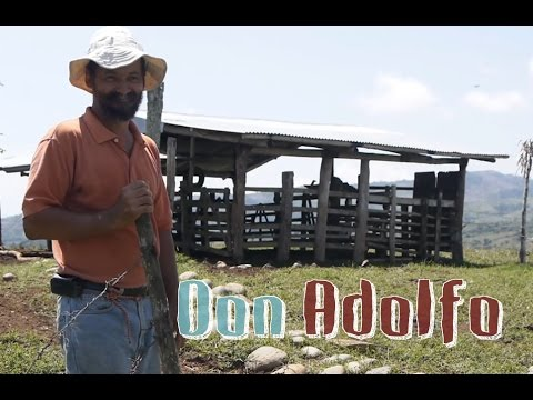 Don Adolfo - Agricultura Rustica