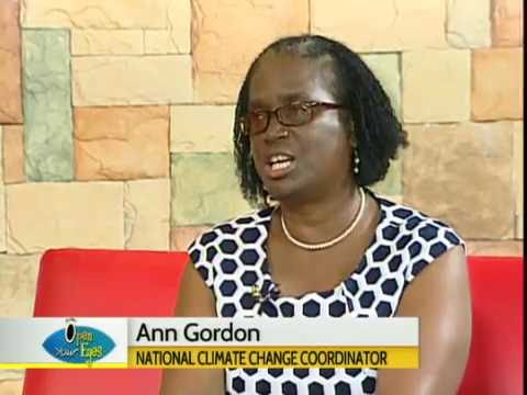 Ms Ann Gordon of the National Climate Change Office