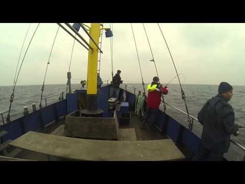 """Dorschangeln auf der MS """"Moret"""" - Hochseefischen Ostsee"""