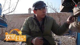 《攻坚日记》 20200410 武功亮的梦(2)|CCTV农业