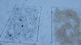 염화칼슘 제설제 소금 제설용소금 염화칼슘파는곳