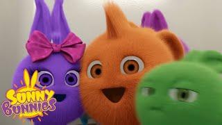 SUNNY BUNNIES - Fun in the Photo Booth | Season 2 | Cartoons for Children