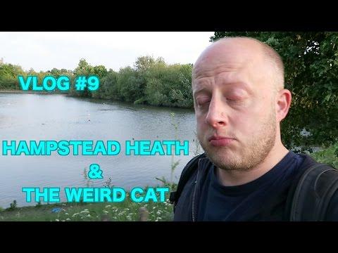Hampstead Heath & The Weird Cat  - Vlog#9