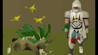 Testing Herbiboars on OSRS (GP and XP)