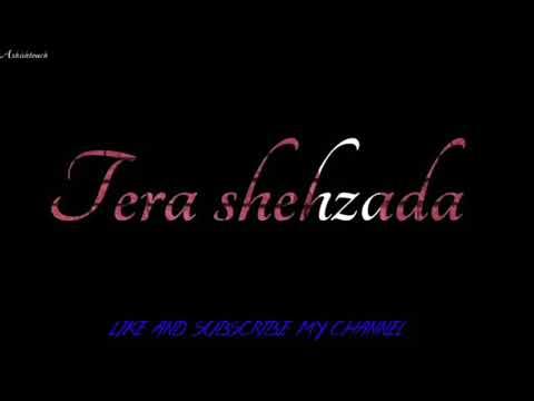 sun-meri-shehzadi-main-hoon-tera-shehzada-whatsapp-status-2020-||