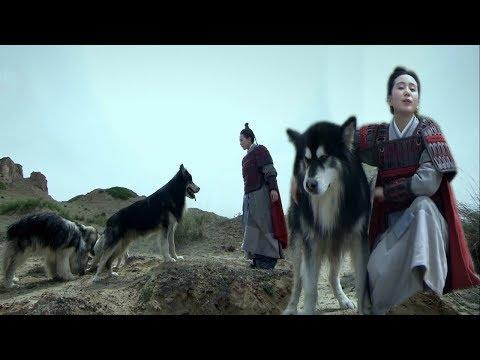 Người Đẹp Gặp Lại Bầy Sói Khiến Cả Đại Quân Thảm Bại Với Sức Mạnh Của Bầy Sói | Lady Drama