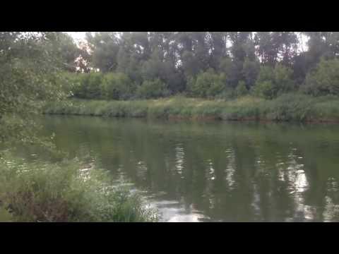 Река Урал лето 2015 года