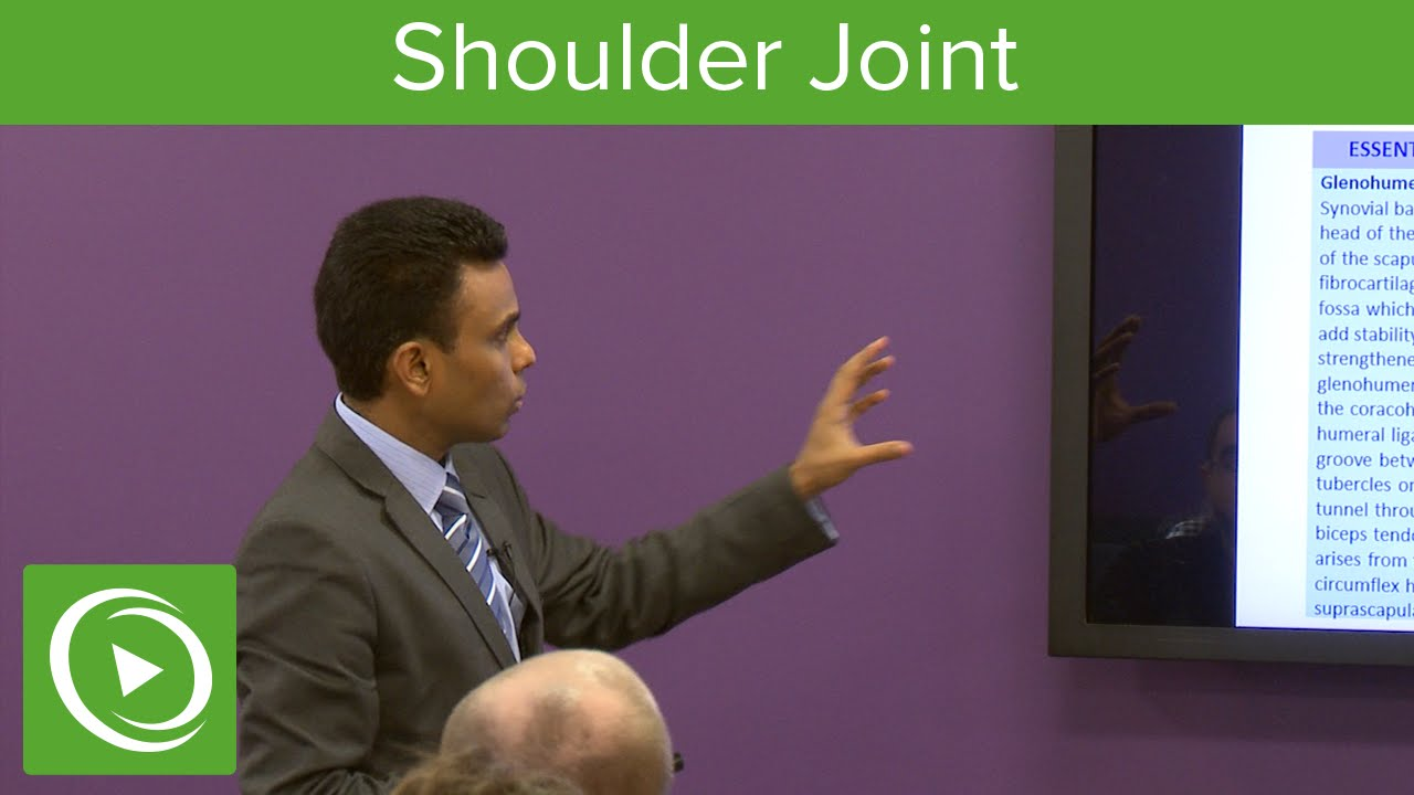 Muscles of the Shoulder Joint   – MRCS | Lecturio