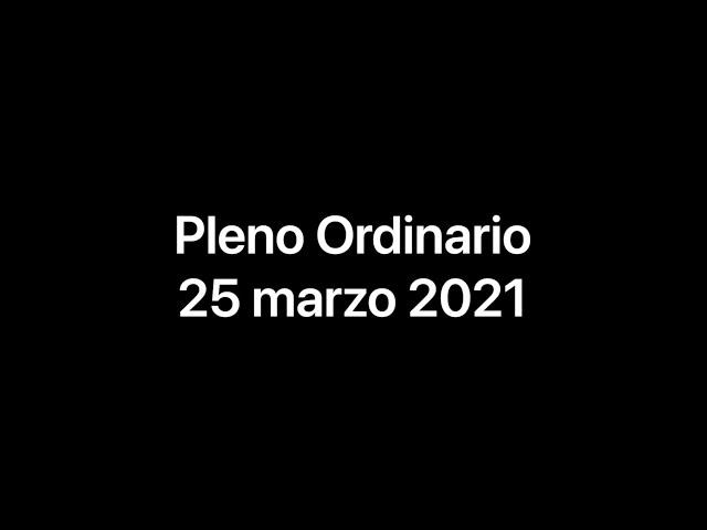 Pleno Ordinario 25-02-21