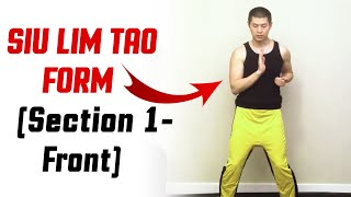 The BEST of Wing Chun - Siu Lim Tao Form (Section 1 - Front)