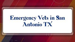 Top 10 Emergency Vets in San Antonio, TX