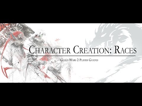 Guild Wars 2  | New Player Guide: Character Creation, Options & Races The Forsaken Thicket