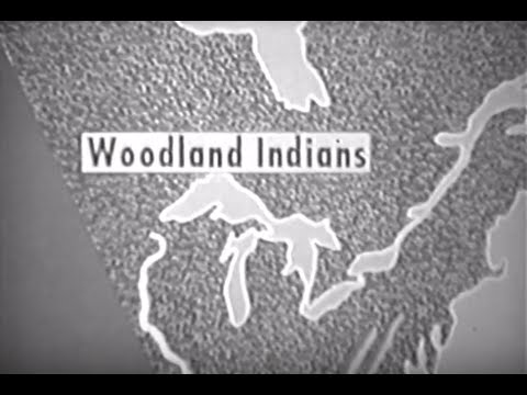 Woodland Indians of Early America (Elementary)