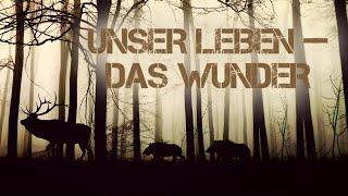 Unser Leben und das Wunder (Dokumentation, Tieraufnahmen, Tierfilm) ganze Tierfilme auf Youtube