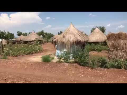 Il Rhino Camp in Uganda