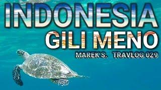 Indonesia Gili Islands   Meno Turtles Paradise Travlog 029