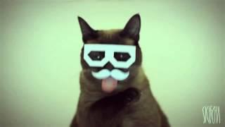 stereo skifcha ~ dubstep cat