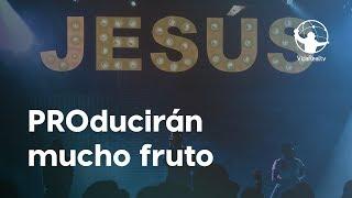PROducirán Mucho Fruto. | Amateur a Pro | Pastor Rony Madrid
