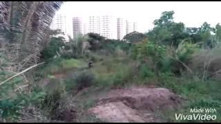 Baixar Angelim Bike park