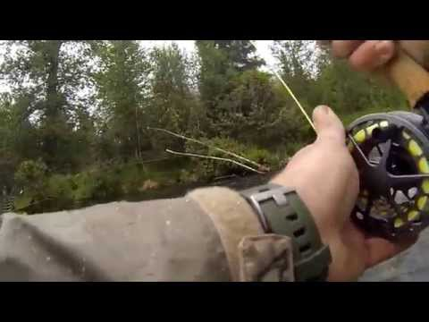 Russian River Fishing