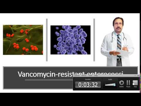 Vancomycin resistant enterococci VRE : Causes, Diagnosis, Symptoms, Treatment, Prognosis