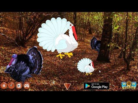 Wow Escape Game Save The White Turkey walkthrough..